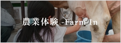 自然体験 Farm In